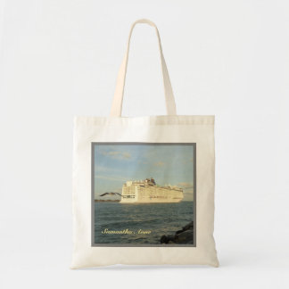 Epic Pursuit - Gull and Cruise Ship Personalized