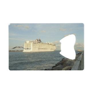 Epic Pursuit - Gull Follows Cruise Ship