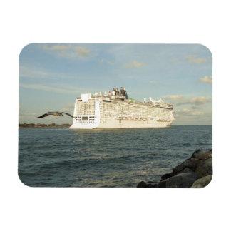 Epic Pursuit - Gull Follows Cruise Ship Magnet