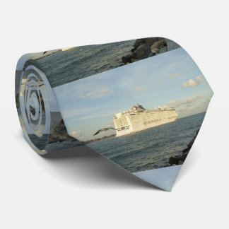 Epic Pursuit - Gull Follows Cruise Ship Tie