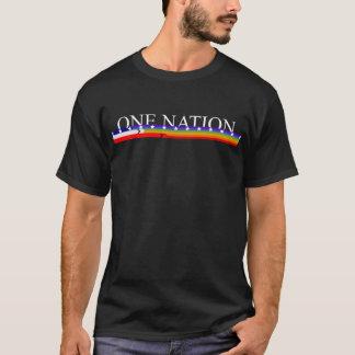 Equality LGBT America One Nation shirt