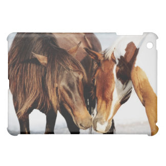 Equestrian Pony Love iPad Mini Case