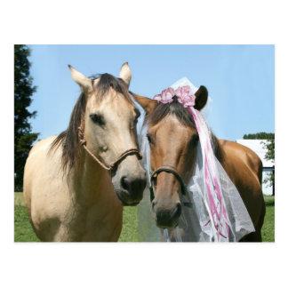 Equine bride and groom postcard