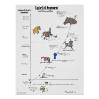 Equine Risk Assessment LARGE Poster