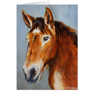 Equine Voices Gulliver Card