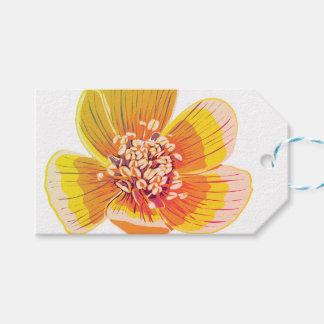 Eranthus - Rainbow Flower Gift Tags