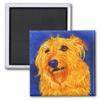 """""""Ernie"""" - Shaggy Hound Mix Magnet"""