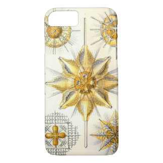Ernst Haeckel  Acanthometra iPhone 8/7 Case