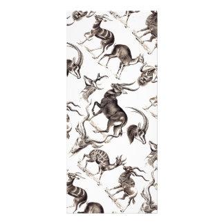 Ernst Haeckel Antilopina Rack Card Template