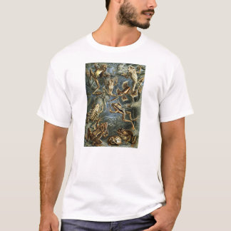 Ernst Haeckel - Batrachia T-Shirt
