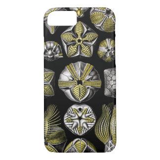 Ernst Haeckel Blastoidea iPhone 8/7 Case