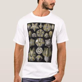 Ernst Haeckel - Blastoidea T-Shirt