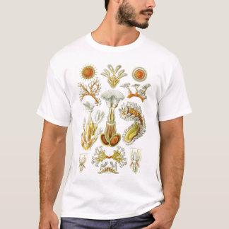 Ernst Haeckel - Bryozoa Tshirt