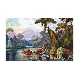 Ernst Haeckel Ceylon Jungle River Canvas Print