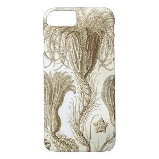 Ernst Haeckel Crinoidea feather stars iPhone 8/7 Case