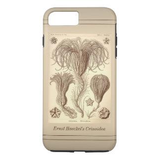 Ernst Haeckel Crinoids- Full Page iPhone 7 Plus Case
