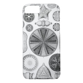 Ernst Haeckel Diatomea iPhone 8/7 Case