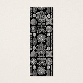 Ernst Haeckel  Diatomea Mini Business Card