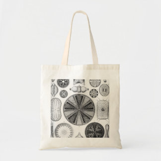 Ernst Haeckel Diatomea Tote Bag