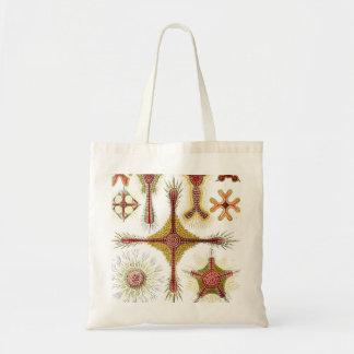 Ernst Haeckel Discoidea Tote Bag