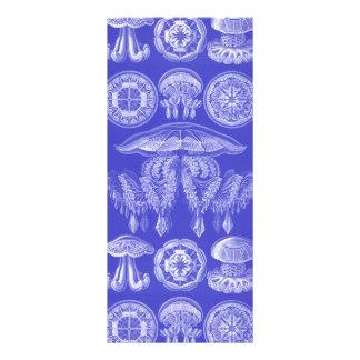 Ernst Haeckel Discomedusae III Rack Card Design
