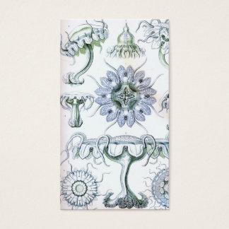 Ernst Haeckel Discomedusae Jellyfish Business Card