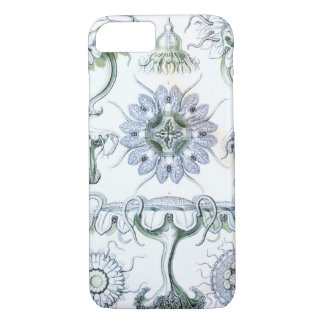 Ernst Haeckel Discomedusae Jellyfish iPhone 8/7 Case