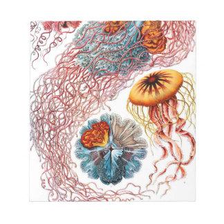 Ernst Haeckel Discomedusae Jellyfish Notepad