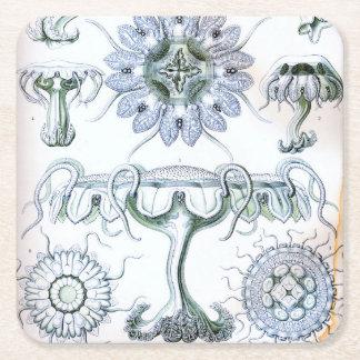 Ernst Haeckel Discomedusae Jellyfish Square Paper Coaster