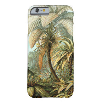 Ernst Haeckel Filicinae Ferns Barely There iPhone 6 Case