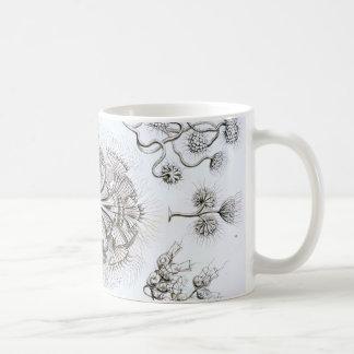 Ernst Haeckel Flagellata Coffee Mug