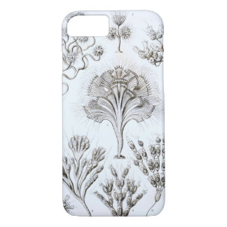 Ernst Haeckel Flagellata iPhone 8/7 Case