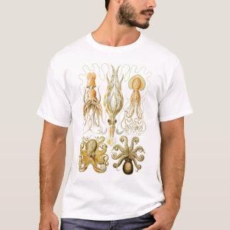 Ernst Haeckel - Gamochonia T-Shirt