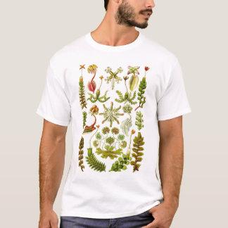 Ernst Haeckel - Hepaticae T-Shirt