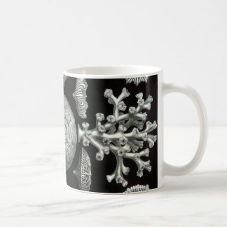 Ernst Haeckel Hexacorallia Coral Coffee Mug