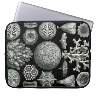 Ernst Haeckel Hexacorallia Coral Laptop Computer Sleeves