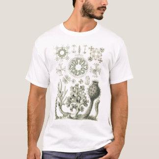 Ernst Haeckel - Hexactinellae Tshirt