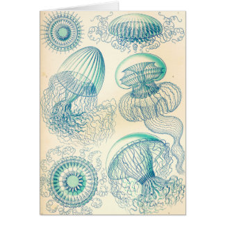 Ernst Haeckel   Leptomedusa   Thecate Hydroids Card