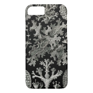 Ernst Haeckel Lichens iPhone 8/7 Case