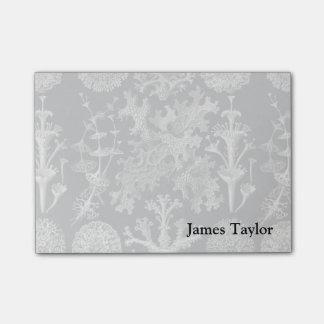 Ernst Haeckel Lichens Post-it Notes