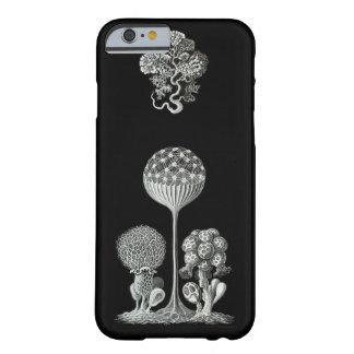 ERNST HAECKEL: Mycetozoa iPhone 6 Case