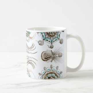 Ernst Haeckel Narcomedusae jellyfish! Coffee Mug