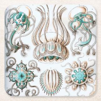 Ernst Haeckel Narcomedusae jellyfish! Square Paper Coaster