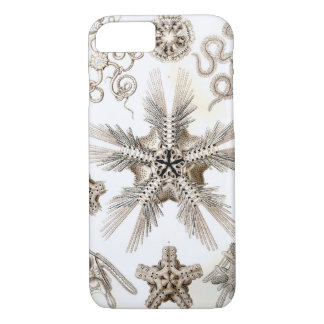 Ernst Haeckel Ophiodea brittle Stars iPhone 8/7 Case