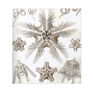 Ernst Haeckel Ophiodea brittle Stars Notepad
