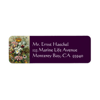 Ernst Haeckel Orchids, Vintage Rainforest Flowers Return Address Label