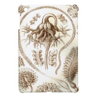 Ernst Haeckel Pennatulida Coral iPad Mini Cover