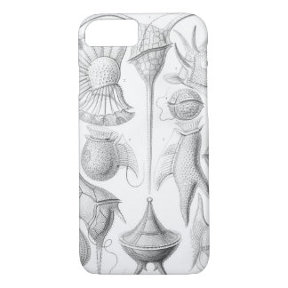 Ernst Haeckel Peridinea worms iPhone 8/7 Case