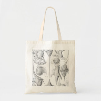 Ernst Haeckel Peridinea worms Tote Bag