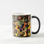 Ernst Haeckel Sea Anemones Vintage Art Morphing Mug